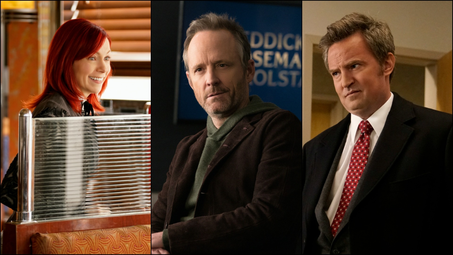 Take a look back at the guest stars who joined The Good Fight