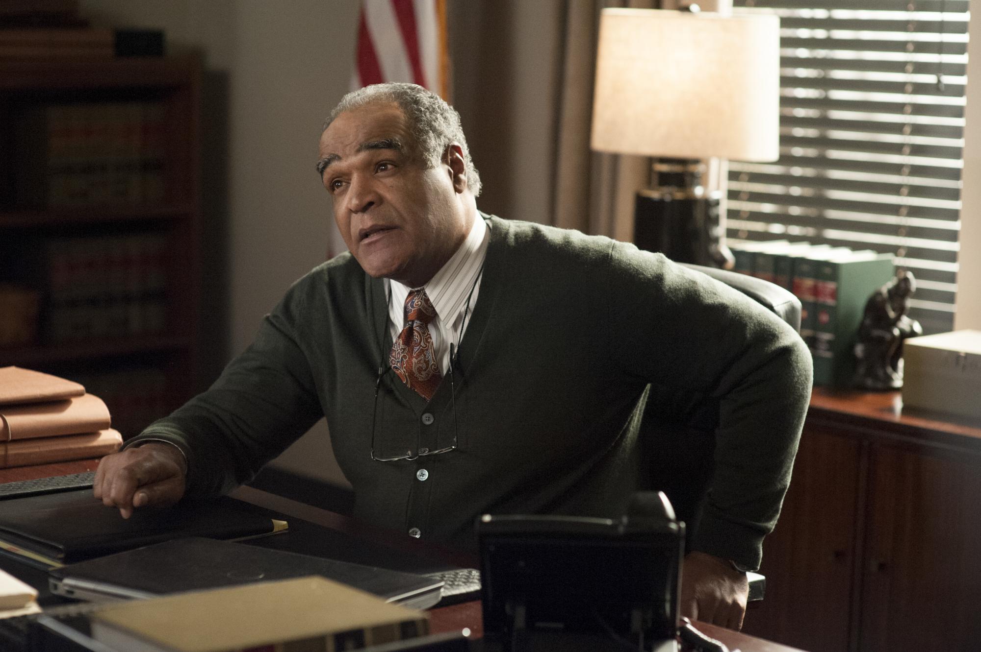 David Fonteno as Judge Parks in