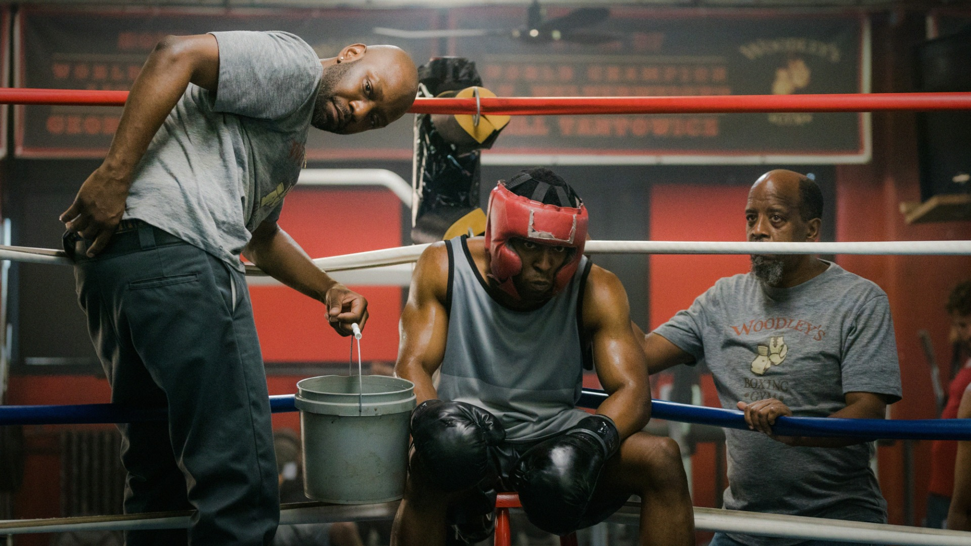 Shinwell Johnson works with a boxer.