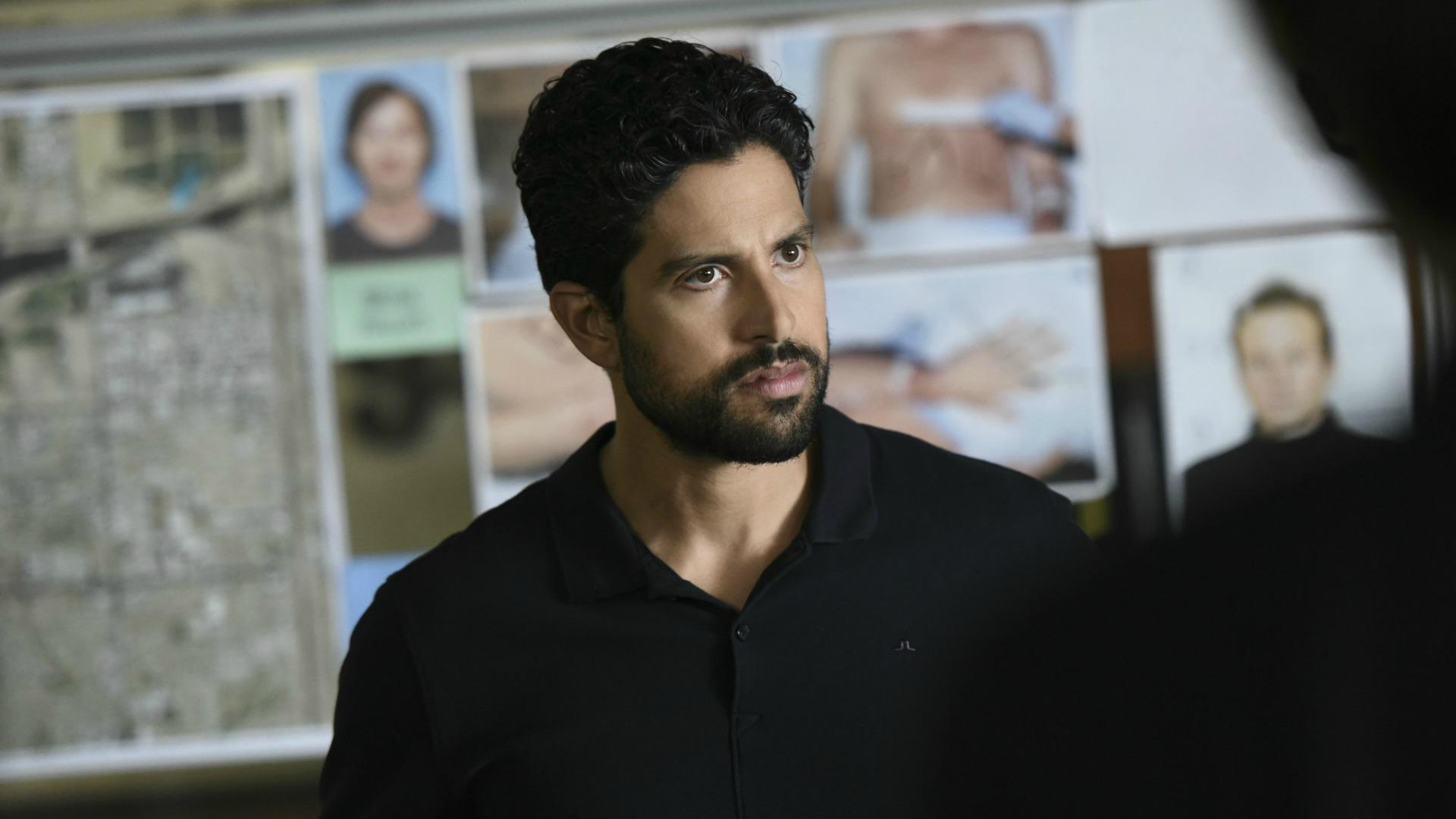 Agent Luke Alvez discusses the profile with the team.