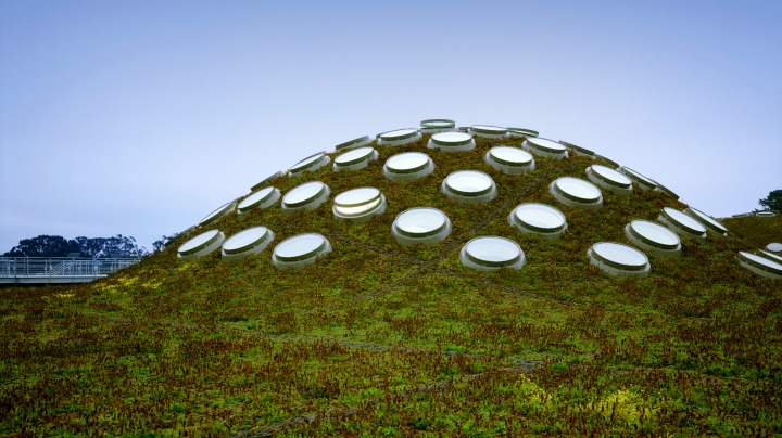 10. The Living Dome at Renzo Piano's California Academy of Sciences