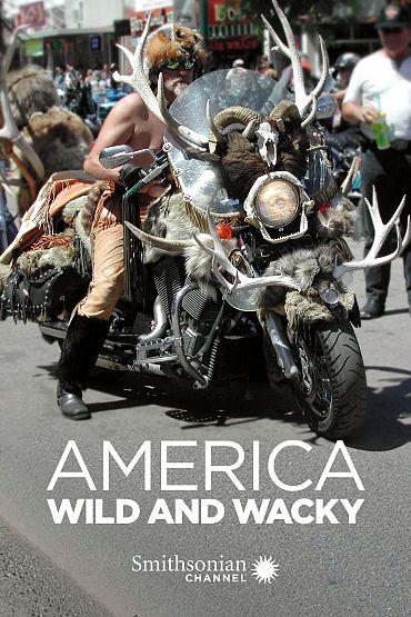 America Wild and Wacky
