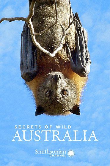 Secrets of Wild Australia