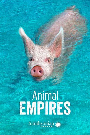 Animal Empires