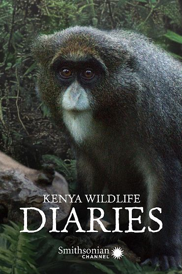 Kenya Wildlife Diaries