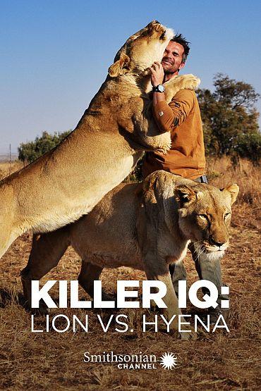 Killer IQ: Lion vs. Hyena