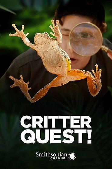 Critter Quest!
