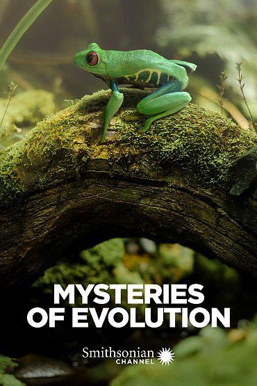 Mysteries of Evolution